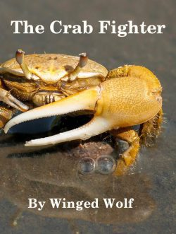 The Crab Fighter (LitRPG)
